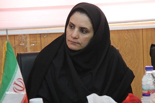 از بانوان کارآفرین استان بوشهر حمایت شود