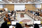 باشگاه خبرنگاران - کارگاه کشوری مکانیابی جمعیتهای پرخطر در شهرکرد