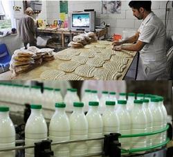 ردپای «سبوس هاى دامى» در برخی نانوایی ها/ پشت پرده ماجراى استفاده از سفیدکنندهها در لبنیات چیست؟