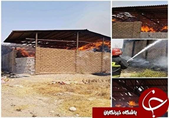 باشگاه خبرنگاران -حریق در انبار کاه / آتش کوتاه نمی آید