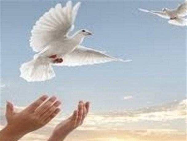 پیامبر چه کسانی را عفو نمیکرد؟