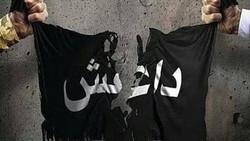 جنایات دیده نشده داعشیهای ایرانی + فیلم