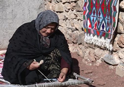 از مهمان ناخوانده درختان شمال تا ساماندهی تولیدات زنان عشایر + فیلم