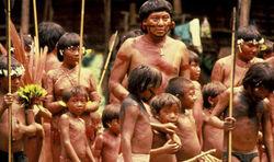 تنهاترین مرد جهان، آخرین بازمانده یک قبیله بدوی در جنگلهای آمازون+ عکس و فیلم