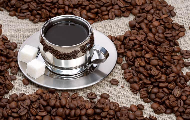 اگر هر روز قهوه بنوشیم چه اتفاقی در بدن ما رخ میدهد؟