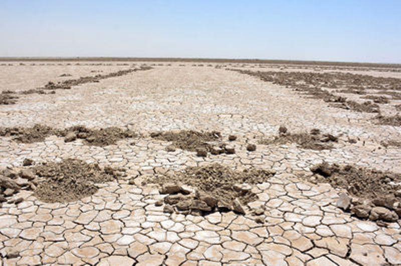 خشکی آب های شیرین تالاب ها عمده ترین دلیل  گرد و غبار اطراف تهران هستند/ 18 میلیون هکتار کانون گرد و غبار در کشور داریم