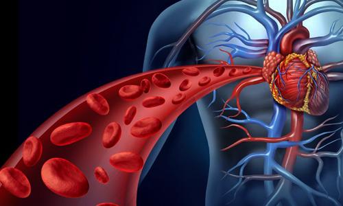 خوراکیهایی که کلسترول خونتان را پایین میآورد + اینفوگرافی