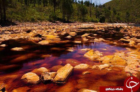 دریاچهای که بی تعارف جانتان را میگیرد +عکس