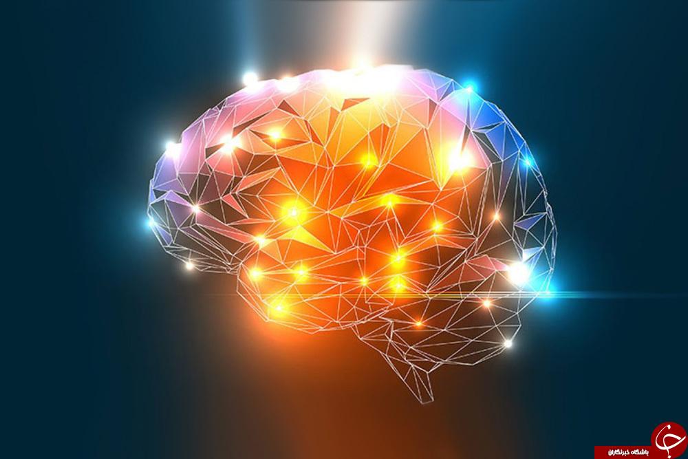 هوش های چند گانه چیست و چطور می توان آن ها را تقویت کرد؟! / از هوش های چندگانه چه می دانید؟!