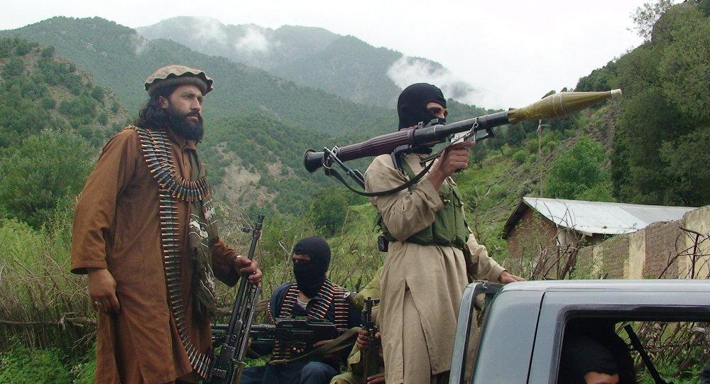 طالبان معتقد به دولت؛ داعش قائل به خلافت!