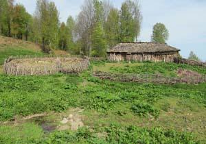 نمایی از طبیعت بکر در روستای امیرکلا + تصاویر