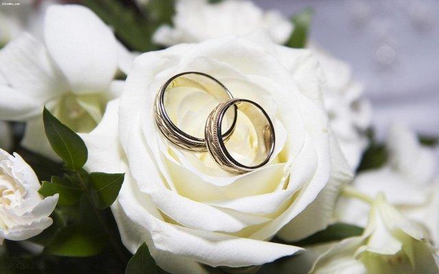نمایشگاه ازدواج و جهیزیه ایرانی در یزد برگزار میشود
