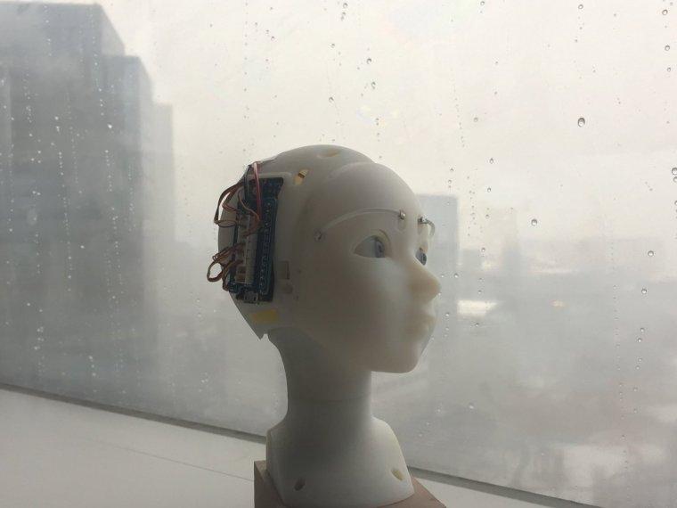 چشمان ربات هوشمند با شما سخن میگوید+تصاویر