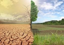 به صدا در آمدن زنگ خطر خشکسالی در شمال کشور/  آیا استان گلستان بیابان می شود؟ + فیلم