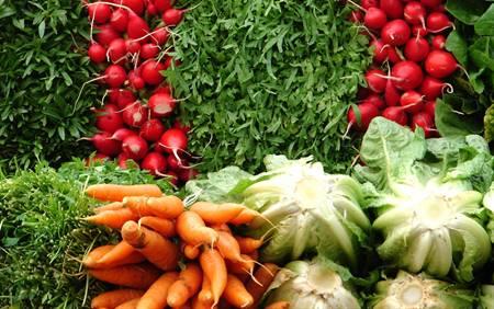 ۷ نشانه که نیاز به مصرف سبزیها را هشدار میدهد