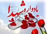 باشگاه خبرنگاران - برگزاری یادمان لالههای آسمانی شهر نیر