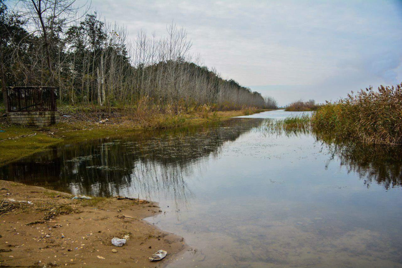 تبدیل تالاب های مازندران به کاسه های آب