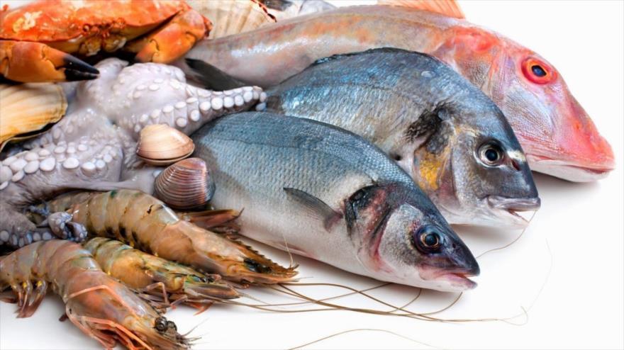 قیمت انواع ماهی و میگو منجمد در فروشگاههای زنجیرهای