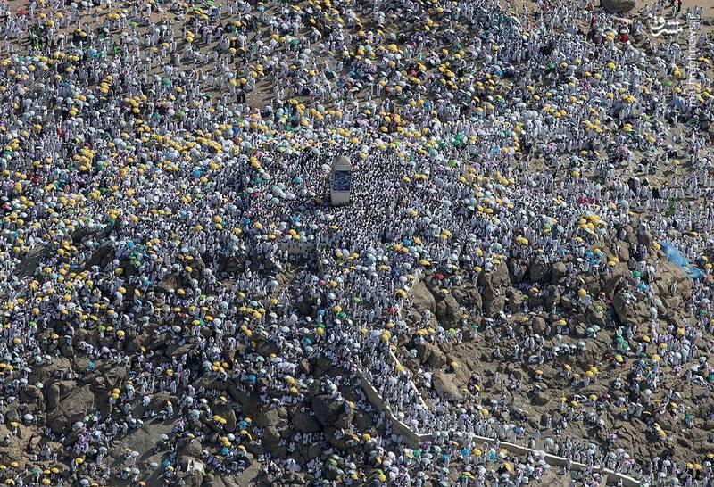 تصاویر دیدنی از مناسک حج و وقوف حجاج در صحرای عرفات+ تصاویر
