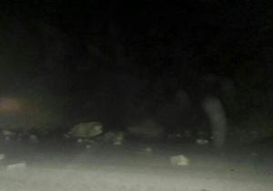 زلزله 4.9 ریشتری تازه آباد را لرزاند
