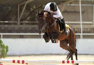 معرفی برترین های رقابتهای پرش با اسب همدان