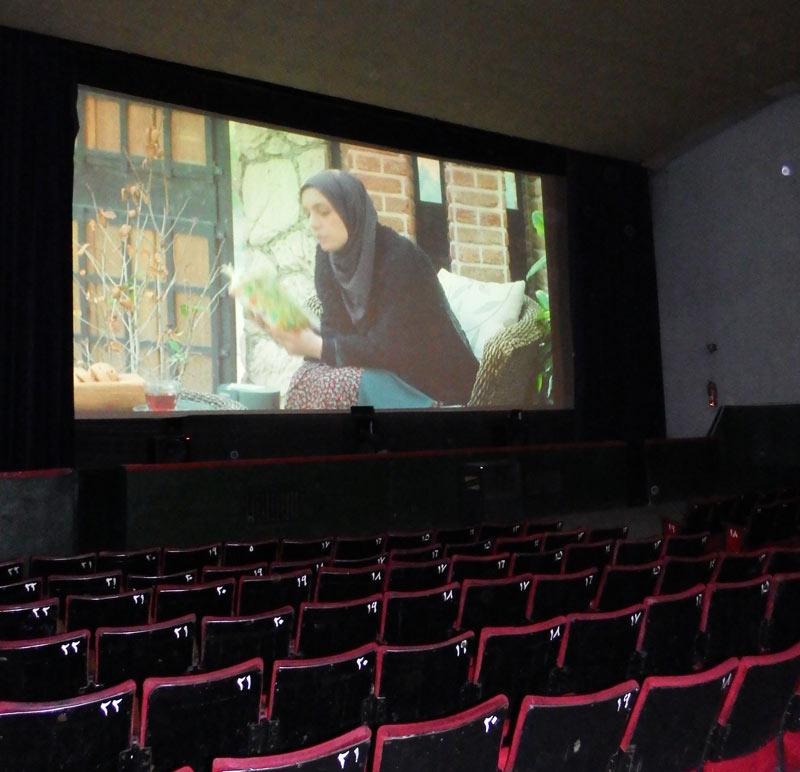 جدول آمار فروش فیلمهای روی پرده سینما/ «هزارپا» مرز ۳۵ میلیارد را رد کرد