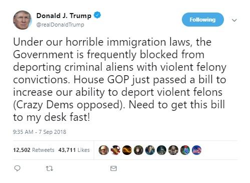 ترامپ: دموکراتهای احمق با لایحه جمهوریخواهان مخالفت کردند!