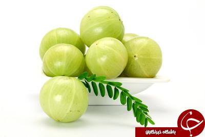 آمله (انگور فرنگی هندی