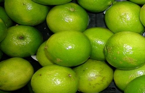 گیاهی دارویی برای رفع تشنگی/میوهای ترش برای درمان سریع دیابت/از مصرف آب در این لیوانها غافل نشوید/پوست ماهی مضر یا مفید؟