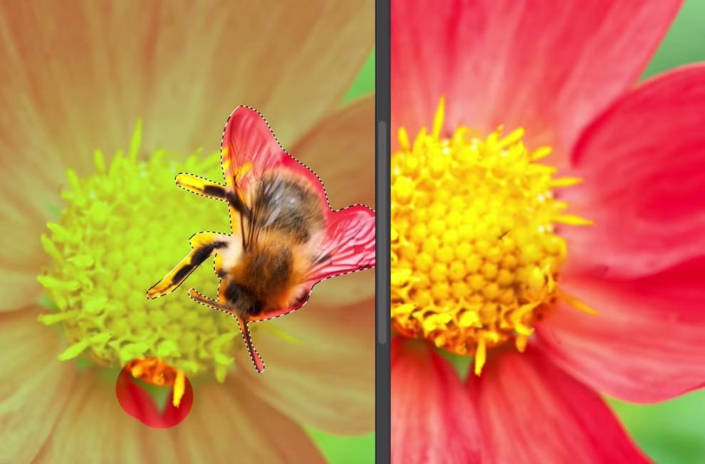حذف و ترمیم حرفهای عکس، قابلیت جدید فتوشاپ