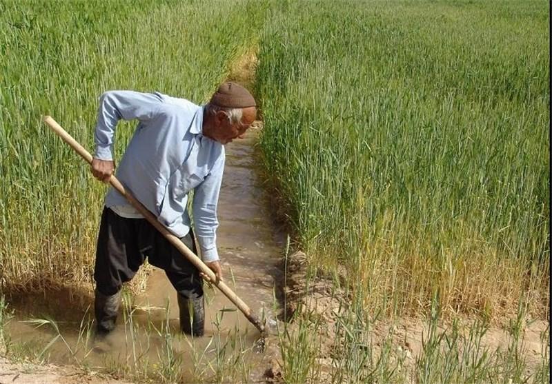 خام فروشی دسترنج روستاییان /مهم ترین راهکار توسعه روستاها چیست؟