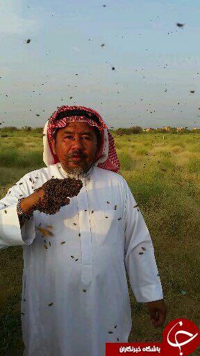 مرد عربستانی برای شهرت لباسی زنده و زهرآگین به تن کرد!+تصاویر