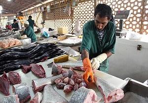 Image result for قیمت انواع ماهی و آبزیان تازه و منجمد در میادین میوه و تره بار اعلام شد