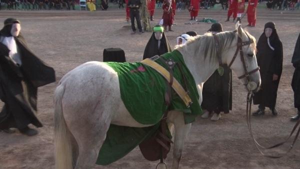 اسب نقش «ذوالجناح» به شبکه مستند می آید