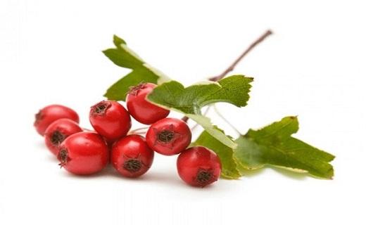 مهار غلظت خون با شربتی طبیعی / چگونه کبد و کلیههایمان را پاکسازی کنیم؟