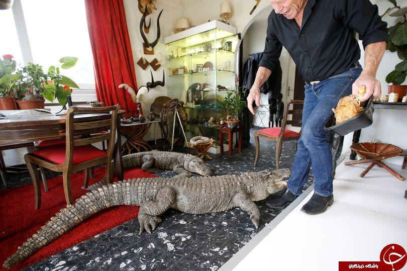 با کلکسیون دار حیوانات وحشی در خانه آشنا شوید! + تصاویر
