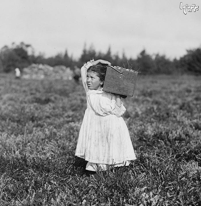 تصاویری ناب از کودکان کار 100 سال پیش