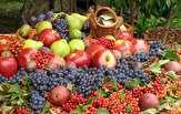 باشگاه خبرنگاران -افزایش 70 درصدی قیمت میوه در بازار/ واردات با نرخ ارز آزاد، قیمت موز را بالا برد