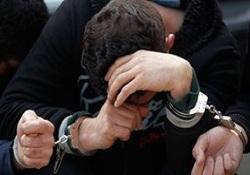 آتشسوزی در بخش ایرانی تالاب هورالعظیم مهار شد / دستگیری عاملان حادثه