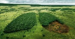 جنگلکاری اقتصادی ومشارکتی وتوزیع آبگرمکن خورشیدی در دالاهو