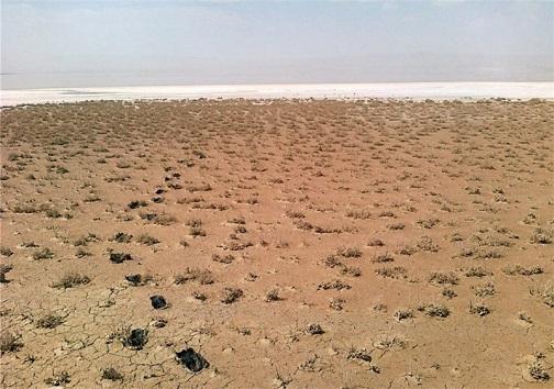 داغ خشکسالی بر پیشانی تالاب کجی نمکزار نهبندان
