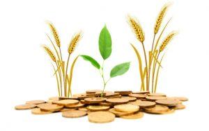 نقض بخشنامه هیات وزیران از سوی بانک کشاورزی/بخشودگی وام کشاورزان به جایی نرسید