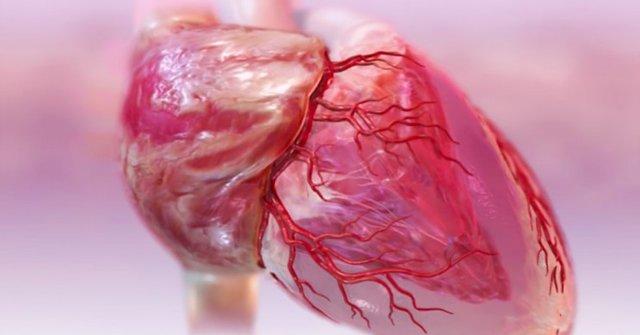 درمان نارسایی قلبی با کشف یک مولکول جدید