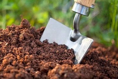 راهکاری مناسب برای کود دهی گیاهان