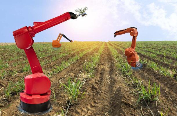 رباتهای کشاورز، جدیدترین همکار انسانها +فیلم