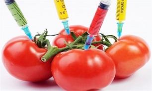 آیا تراریخته بودن مواد غذایی وارداتی از سوی استاندارد بررسی می شود؟