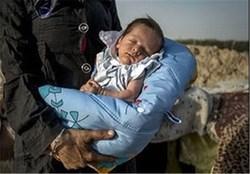 فروش نوزاد به باجناق به قیمت 30 میلیون تومان