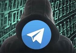 انتقام داماد از مادرزن با فرستادن پیامهای ناشناس در تلگرام
