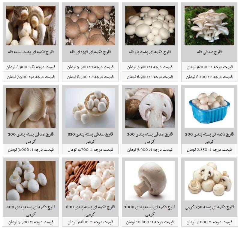 قیمت قارچ در بازار افزایش یافت