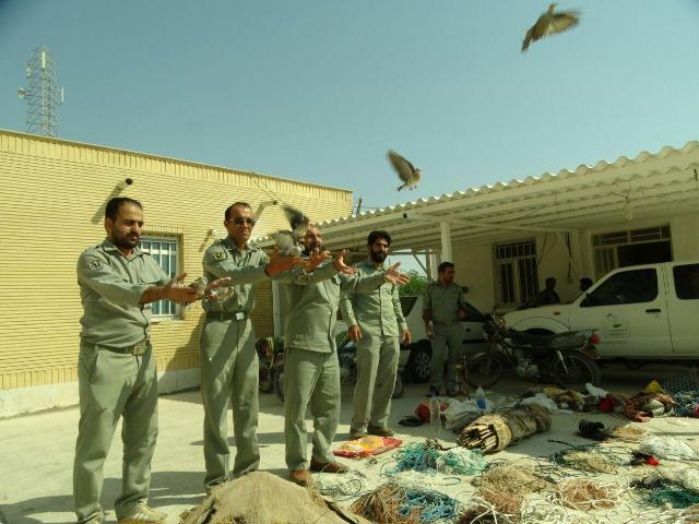 تخریب کومههای صید پرندگان شکاری در بوشهر